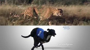 Curiosity.com TV Spot, 'Learn Something New' - Thumbnail 3