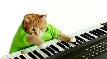 Wonderful Pistachios TV Spot, 'Keyboard Cat'