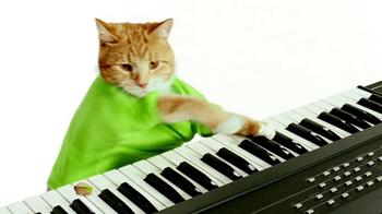 Wonderful Pistachios TV Spot, 'Keyboard Cat' - Thumbnail 2