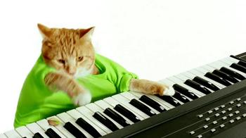 Wonderful Pistachios TV Spot, 'Keyboard Cat' - Thumbnail 3