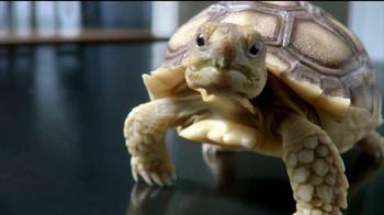 Skylanders Giants TV Spot 'Turtle' - Thumbnail 3