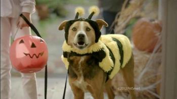 PetSmart Treat Your Pet Sale TV Spot 'Treats' - Thumbnail 4
