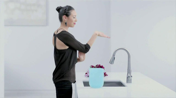 Moen TV Spot, 'Faucet Dance' - 4496 commercial airings
