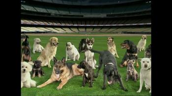ASPCA TV Spot Featuring Tony LaRussa