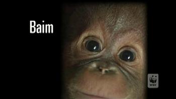 World Wildlife Fund TV Spot 'Baim' - Thumbnail 1