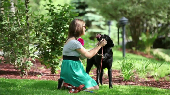Guiding Eyes for the Blind TV Spot Featuring Eli Manning - Thumbnail 6