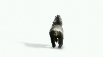 Wonderful Pistachios TV Spot 'Honey Badger' - Thumbnail 2