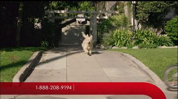 Travelers TV Spot, 'Good Behavior' - Thumbnail 4