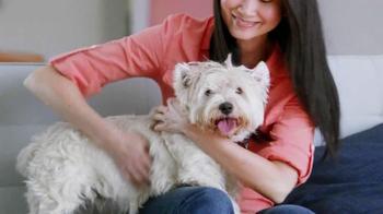 PetSmart Grooming TV Spot - Thumbnail 3