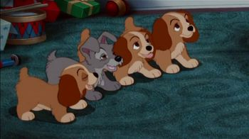 The Shelter Pet Project TV Spot, 'Lady and the Tramp: A New Pet'