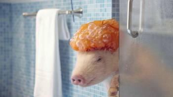 GEICO Mobile App TV Spot, 'Shower' Featuring Maxwell the Pig - Thumbnail 4