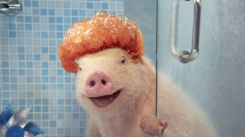 GEICO Mobile App TV Spot, 'Shower' Featuring Maxwell the Pig - Thumbnail 7