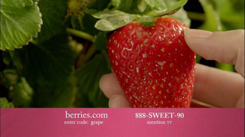 Shari's Berries TV Spot, 'Mother's Day Gifts' - Thumbnail 3