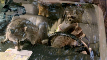 Walgreens TV Spot, 'Road Trip and Raccoons'