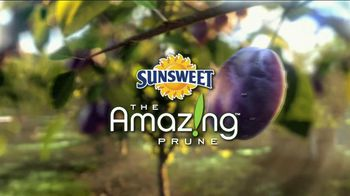 Sunsweet Plum Amazins TV Spot, 'A Prune is a Prune'