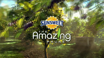 Sunsweet Plum Amazins TV Spot, 'A Prune is a Prune' - Thumbnail 1