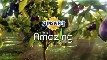 Sunsweet Plum Amazins TV Spot, 'A Prune is a Prune' - Thumbnail 2