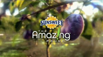 Sunsweet Plum Amazins TV Spot, \'A Prune is a Prune\'
