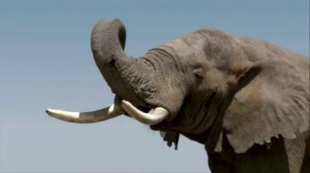 NBA Cares TV Spot, 'Elephants' Featuring Tyson Chandler - Thumbnail 10