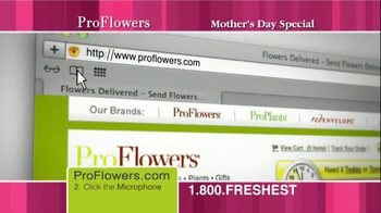 ProFlowers TV Spot, '50% Off TV Offer' - Thumbnail 3