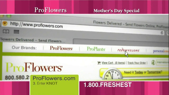 ProFlowers TV Spot, '50% Off TV Offer' - Thumbnail 4
