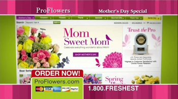 ProFlowers TV Spot, '50% Off TV Offer' - Thumbnail 9