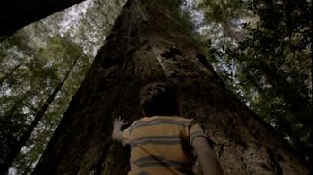 Bank of America TV Spot, 'Camping'
