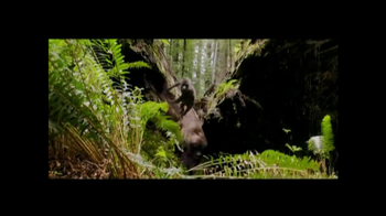 After Earth - Thumbnail 6