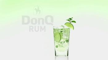 Don Q Rum TV Spot, 'The Ultimate Mojito' - Thumbnail 8