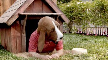 Pert Plus 2-in1 TV Spot, 'Doghouse' - 84 commercial airings