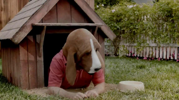 Pert Plus 2-in1 TV Spot, 'Doghouse' - Thumbnail 1
