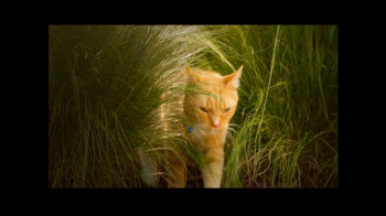 PetSmart Pest Prevention Center TV Spot, 'Jungle Out There' - Thumbnail 2
