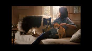 PetSmart Pest Prevention Center TV Spot, 'Jungle Out There' - Thumbnail 6