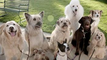 Chase Liquid TV Spot, 'Dog Walker' - Thumbnail 7