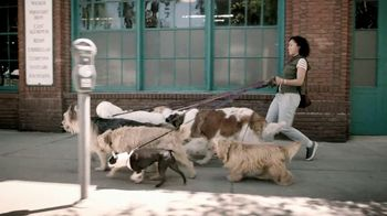 Chase Liquid TV Spot, 'Dog Walker' - 1016 commercial airings