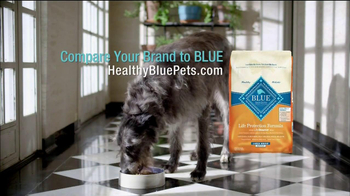 Blue Buffalo TV Spot, 'Pet Cancer Awareness' - Thumbnail 8