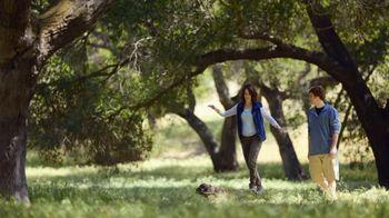 Amica TV Spot, 'Measurements' - 421 commercial airings