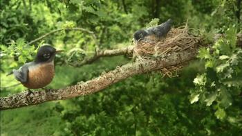 Hallmark TV Spot, 'Mother Bird' - Thumbnail 7