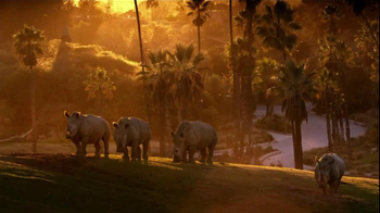 Bank of America TV Spot, 'San Diego Zoo' Song by James Darren - Thumbnail 1