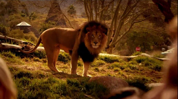 Bank of America TV Spot, 'San Diego Zoo' Song by James Darren - Thumbnail 2