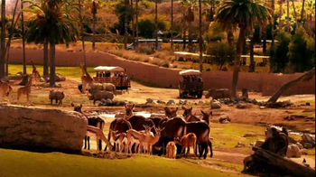 Bank of America TV Spot, 'San Diego Zoo' Song by James Darren - Thumbnail 7