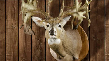 Legendary Whitetails TV Spot, 'Prized Buck' - Thumbnail 4
