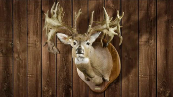 Legendary Whitetails TV Spot, 'Prized Buck' - Thumbnail 6