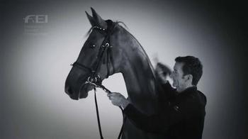 Fédération Equestre Internationale TV Spot, 'Champions' - Thumbnail 8
