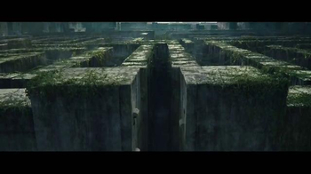 The Maze Runner Blu-ray and DVD TV Spot - Thumbnail 1