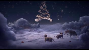 Cartier TV Spot, 'Winter Tale' - Thumbnail 10