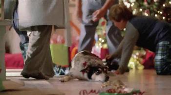 PetSmart TV Spot, 'Dear Sadie' - Thumbnail 2