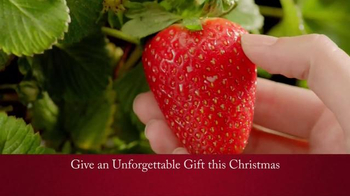 Shari's Berries TV Spot, 'Surprise Them With Something Different' - Thumbnail 3