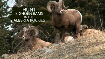 Willmore Outfitters Bighorn Sheep Hunt TV Spot, 'Explore Wild'