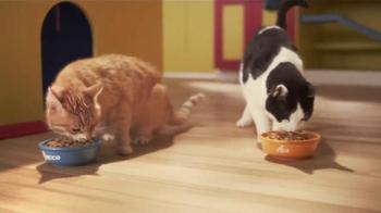 Friskies 7 TV Spot, 'Taste Kitchen' - Thumbnail 7